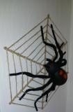 Pavouk 2